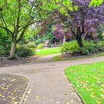Paths at Miller Park, Preston