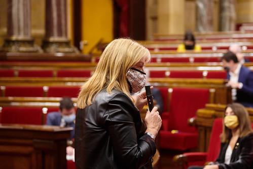 Ple del Parlament (2/12/2020)