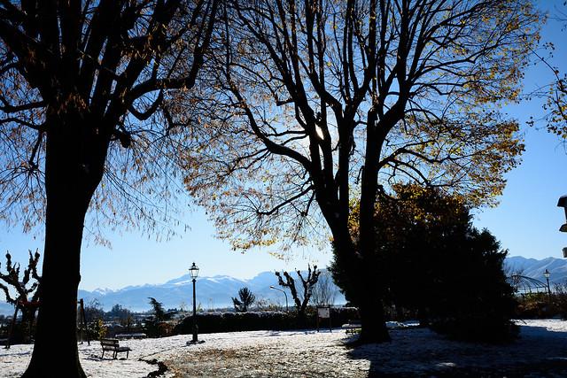 DSC_1614_6486 - Una immagine dei giardini, dopo la prima nevicata. An image of the gardens after the first snowfall.