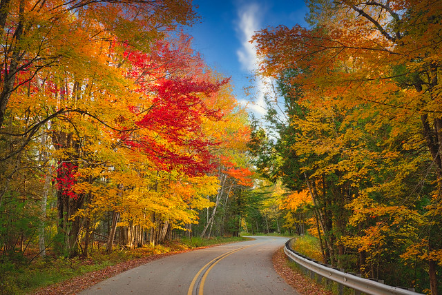 Down That Cedar River Road:  Fall Color