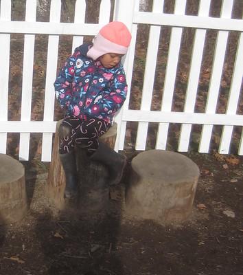 sitting on the big stump