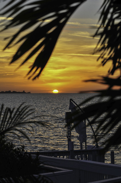 Magnificent Sunset Over Tampa Bay Florida Framed By Palm Trees At Apollo Beach Home Marks New Chapters In Life 7 Years Ago - IMRAN™