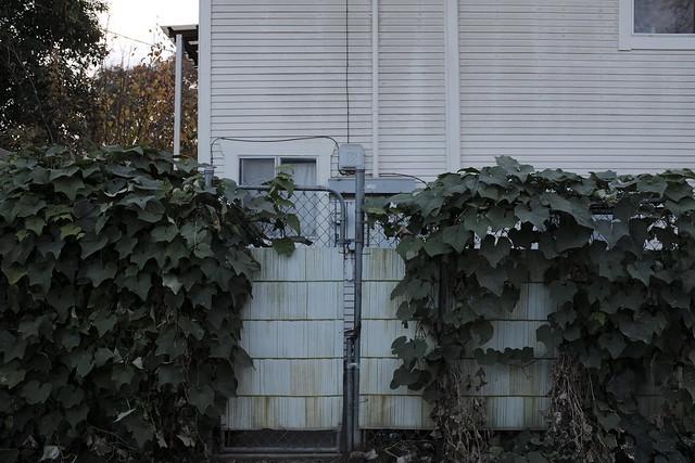 alleyways 31