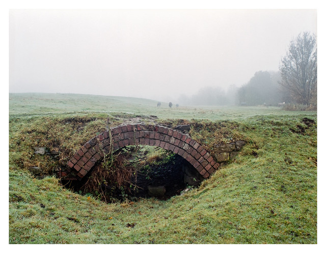 Culvert and horses