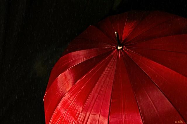Fina lluvia