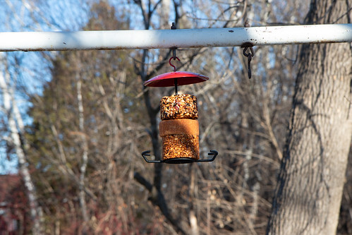 Wild Birds Unlimited bird feeding station