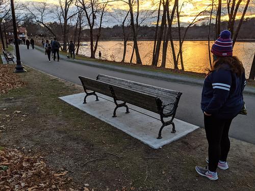 parkbench art trees pond jamaicapond jamaicaplain emeraldnecklace sunset boston bostonma massachusetts newengland citypark matthewhineman