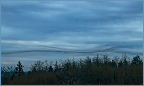 landscape cloud dramaticsky tree trees ime a time warp perhaps