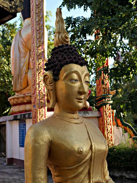 Androgynous Buddha
