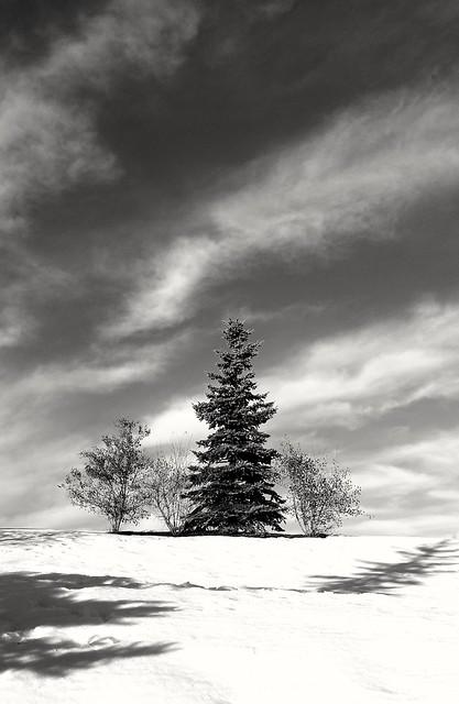 Winter impressions... v2