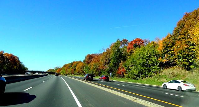 Autumnal Highway
