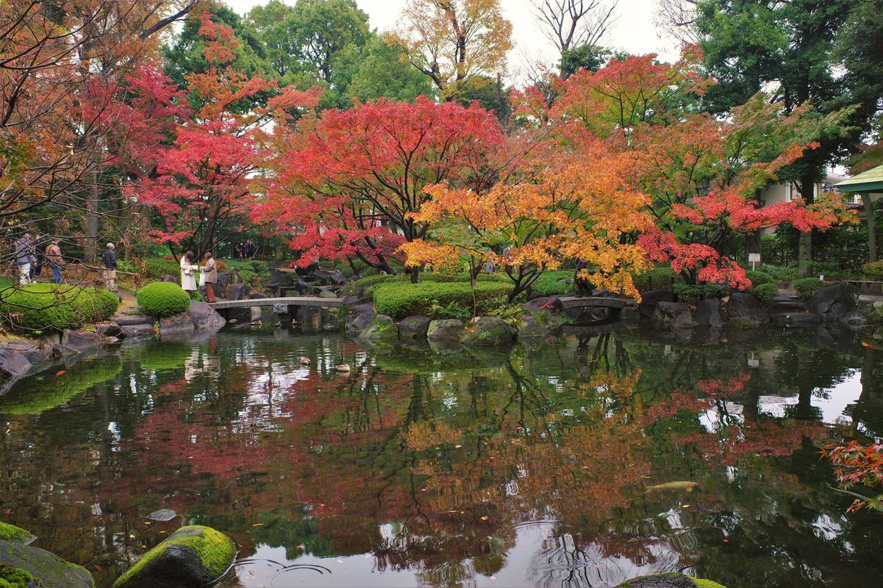大田黒公園 鏡の池に映し出された紅葉