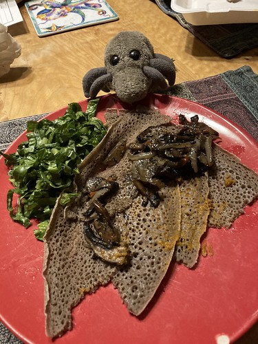 Dust Mite feast