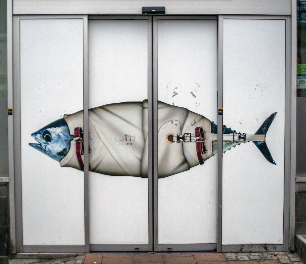 The door to what?