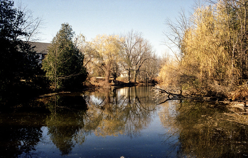 Scotsdale Pond Reflections_