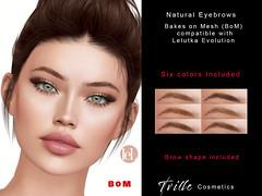 Tville -  Natural Eyebrows (Lelutka)