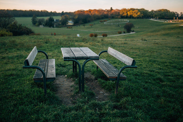 Wooden table and benches in the field