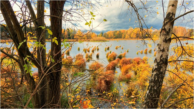 Der Herbst im Wasser
