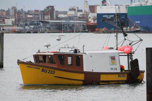 Fishing Boat SU233 ANGELLE MARIE