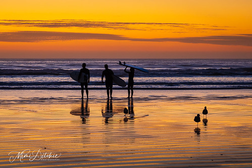 pacificocean pismo pismobeach beach seascape sunset water gulls seagulls silhouettes clouds getty gettyimages mimiditchie mimiditchiephotography