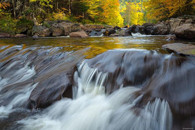 Coulée d'automne/Autumn flow/flujo de otoño