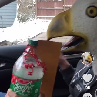 Awkward Eagle Saves The Day
