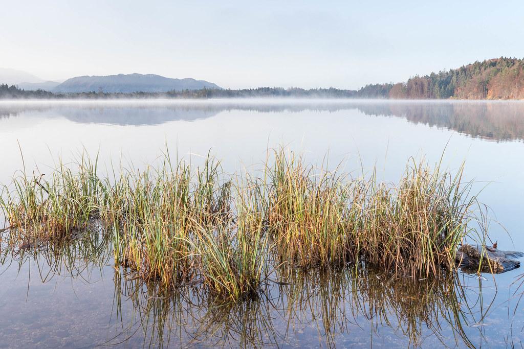 Kirchsee im Ellbach-und Kirchseemoor 5