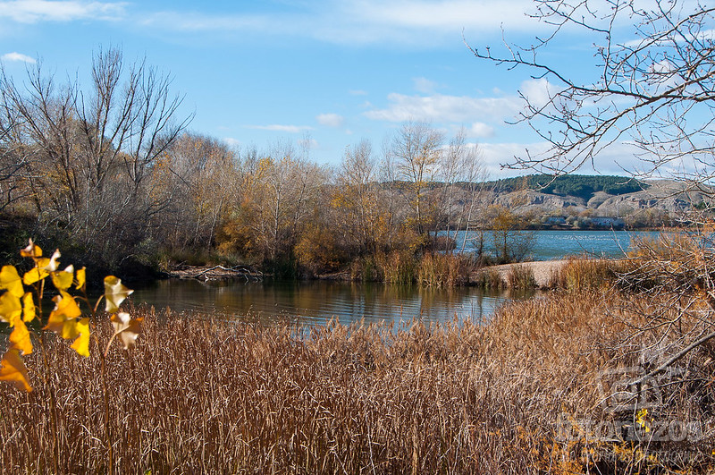 Laguna del Campillo - Puente verde