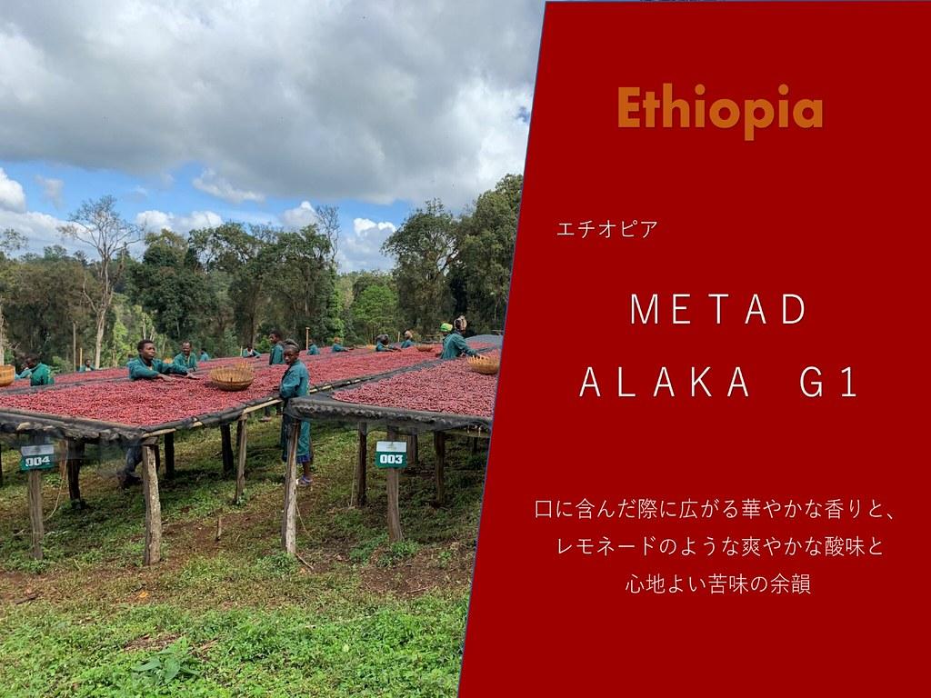 エチオピア METAD ALAKA 200g