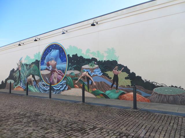 50684753222 4b71005251 z Music Alley Mural (2)