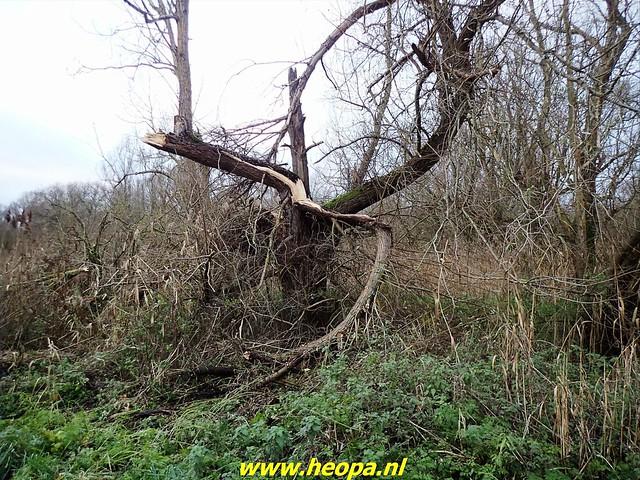 2020-12-05     Door de natuur van Almere  (55)