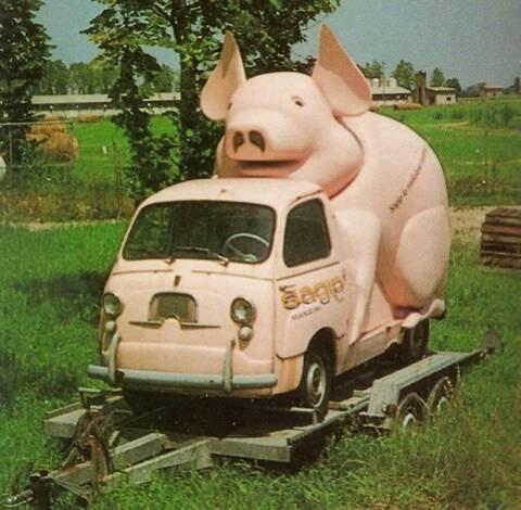 Fiat Multipla Sagip