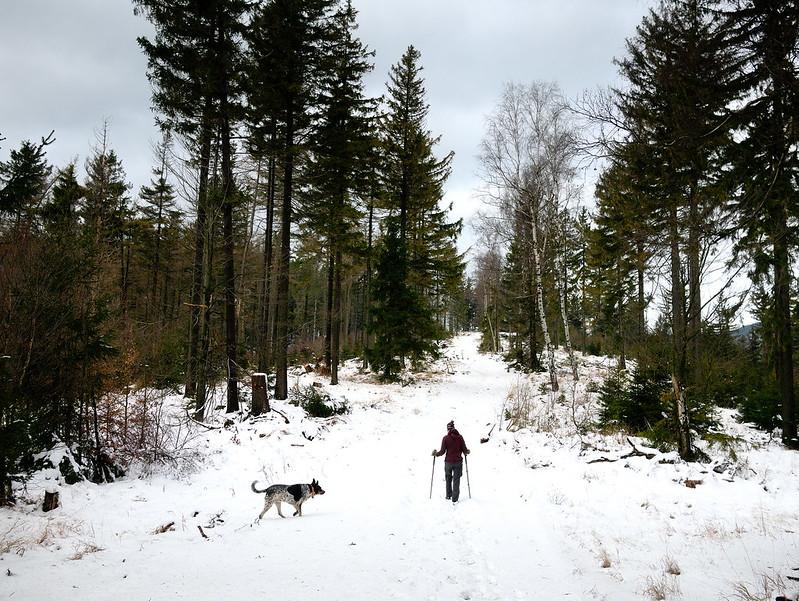 Góry Suche zimą