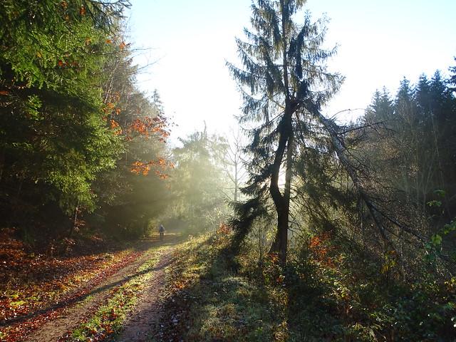 Late Autumn Walk - Herbstspaziergang im Glastal