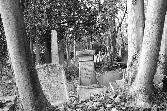 Family grave of Charles Furber