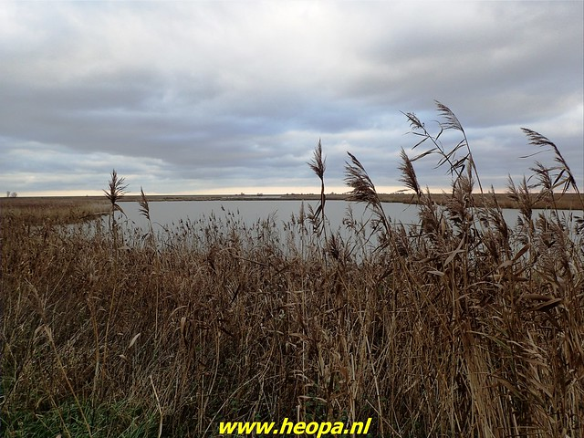 2020-12-05     Door de natuur van Almere  (48)