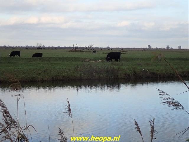 2020-12-05     Door de natuur van Almere  (36)