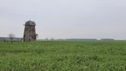 deutschland germany allemagne alemania sachsenanhalt naundorf alteholländermühle mühle mill moulin molino