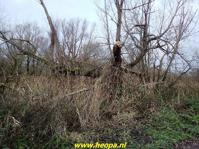 2020-12-05     Door de natuur van Almere  (56)