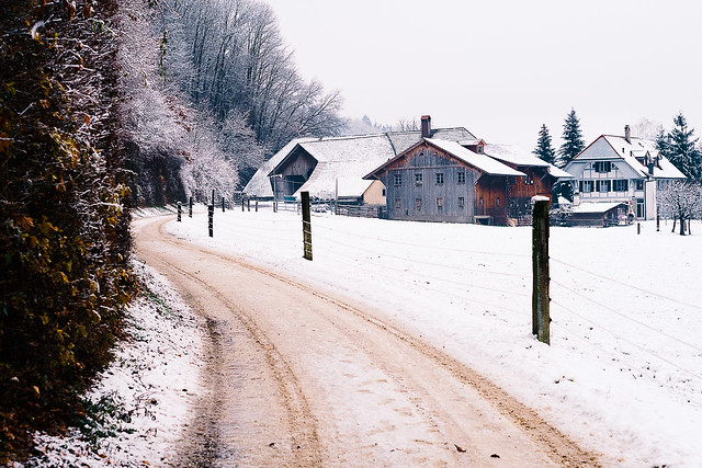 Brown Snow