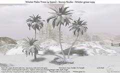 ".:Tm:.Creation ""Winter Palm Trees (4 types) & Rocks"" wp9"