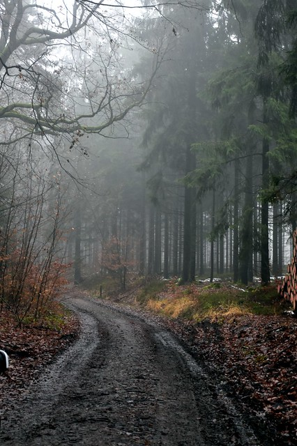 Unterwegs im Odenwald