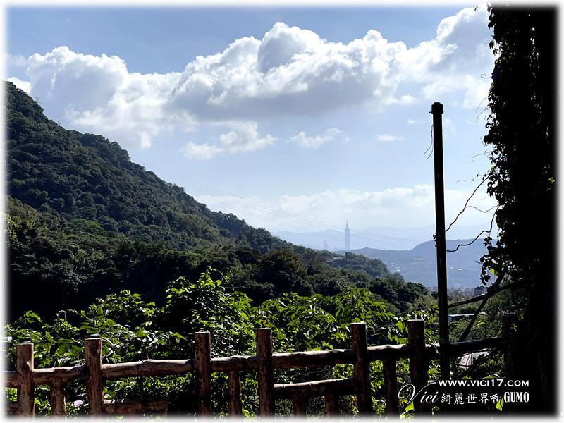 山之林197