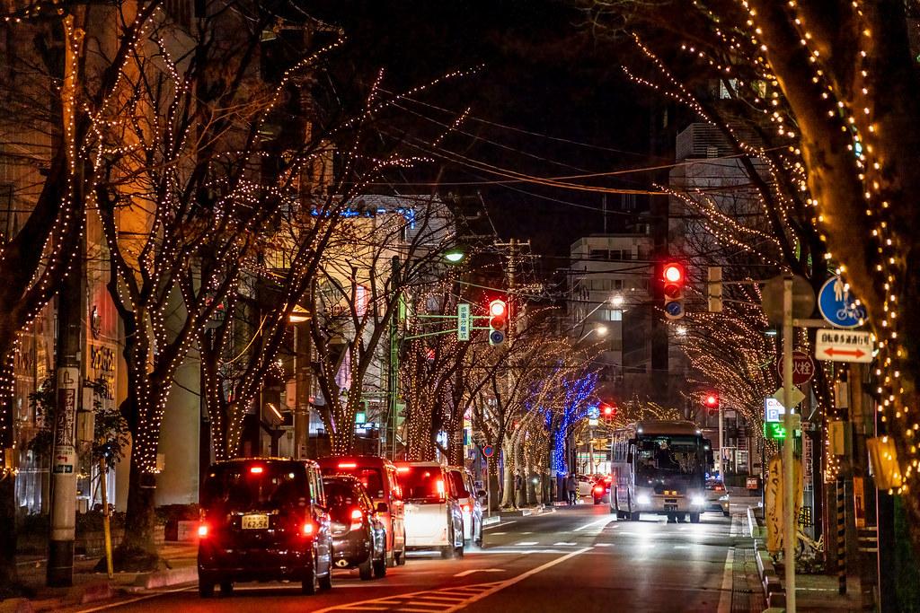 NIIGATA光のページェント 新潟駅 南口 けやき通り