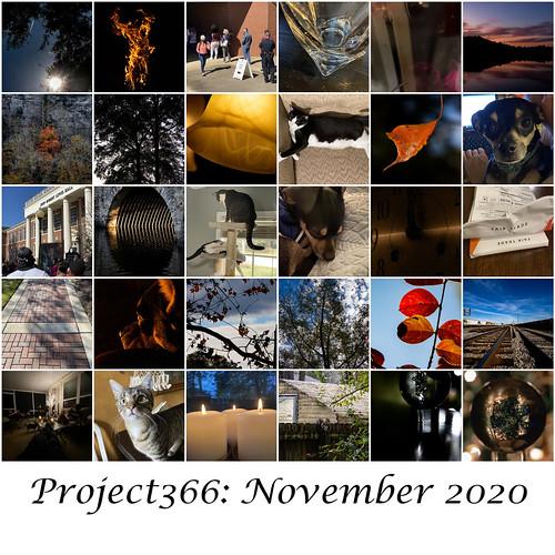 Project366 November