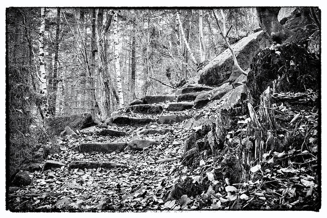 Path on the top of Ślęża in b&w