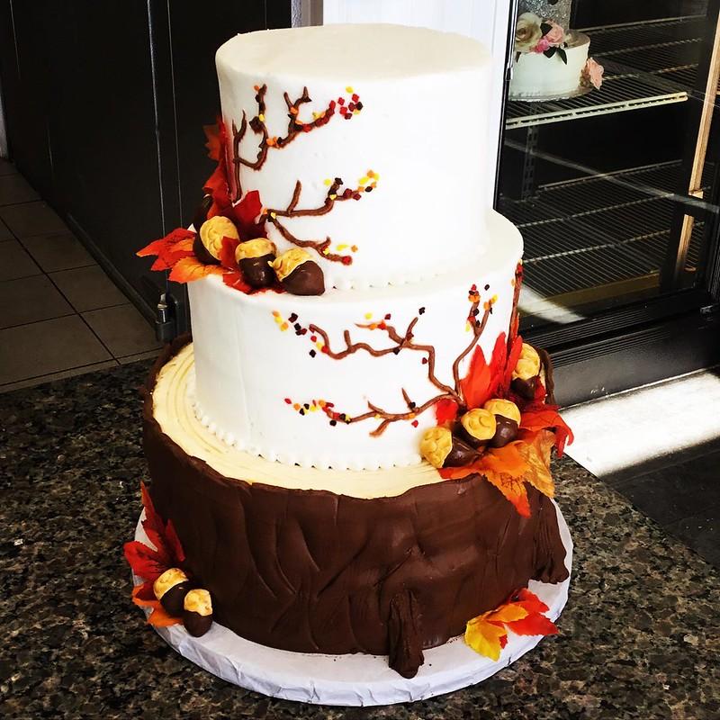 Cake by Omaha Cake Design
