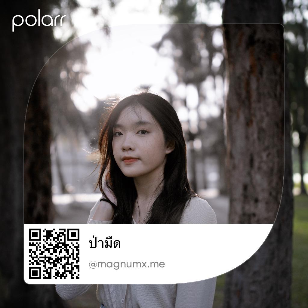 พรีเซ็ตโทนป่ามืด แอพ Polarr
