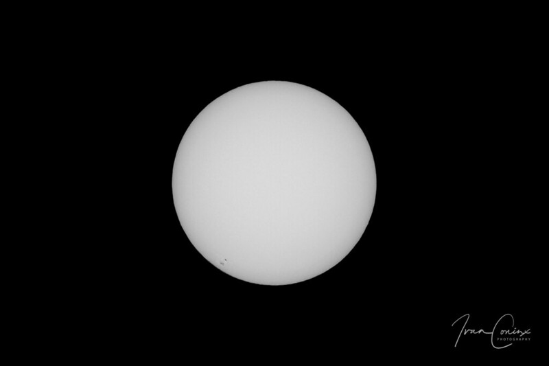 Sun With AR 2781 – Mechelen – 2020 11 04 – 01 – Copyright © 2020 Ivan Coninx