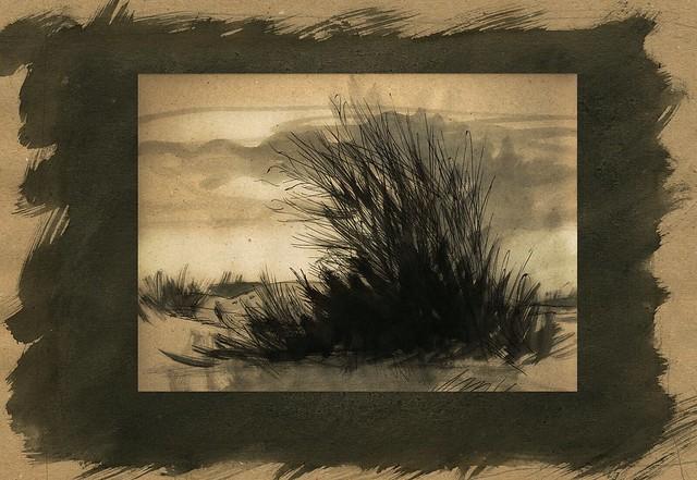 désert du thar - Radjasthan